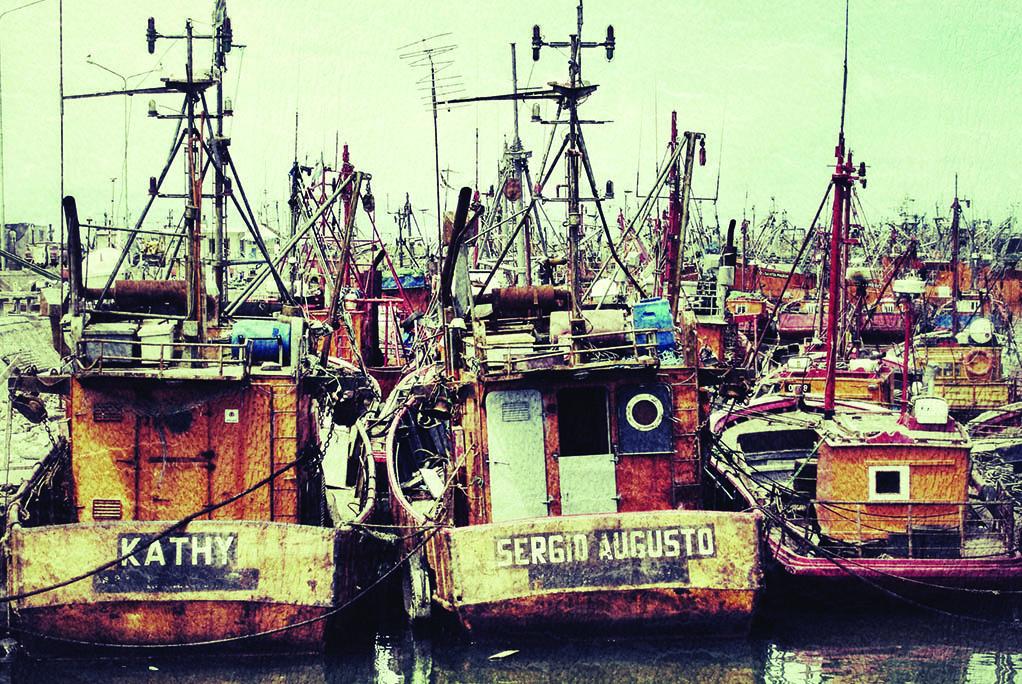 50 Ψαράδικα (Μαρ δελ Πλάτα)